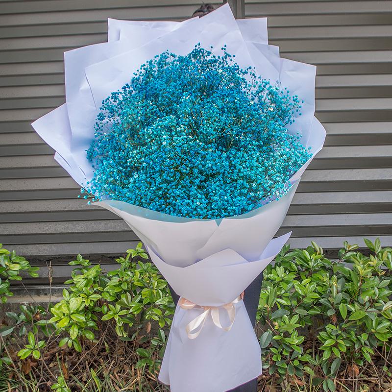 1107         材 料:超大型蓝色满天星,整体花束140cm*50cm 包 装:白